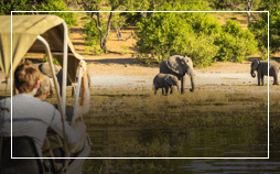 Botswana flights from £ 511