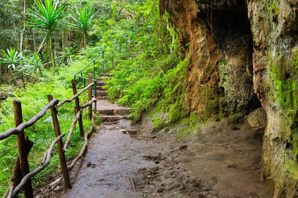 Hiking trail in Kenya