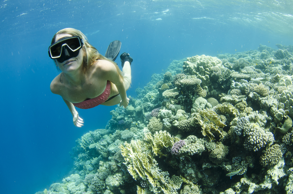 Woman snorkeling and free diving