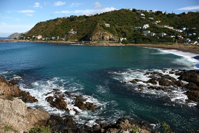 A Whole new World of Bays and Beaches in Wellington