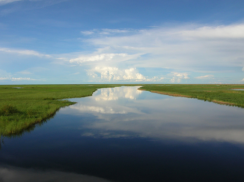 A Mirror For The Sky Lake Bangweulu Zambia