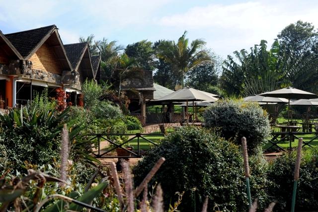 Mamba_Village