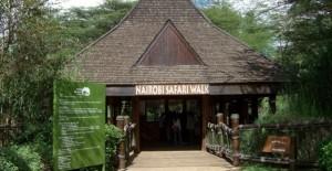 Ignite your sense of Adventures; Wildlife in Nairobi, Kenya
