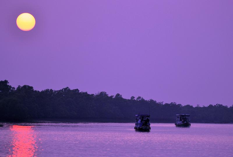 Sundarbans at Sunset Bangladesh
