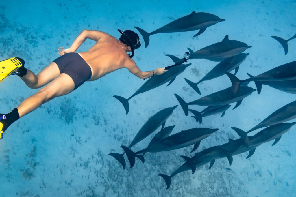 Man is swimming with fishes