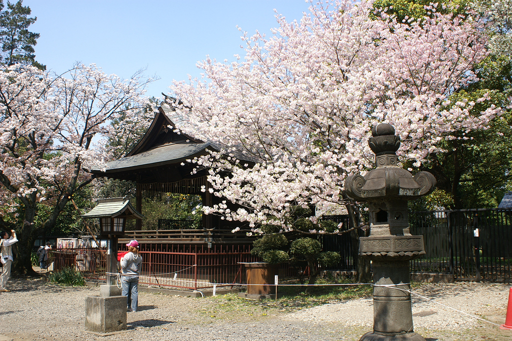 Uéno Park in central Tokyo Japan
