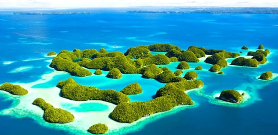 Cheap flights to Micronesia