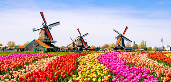 Cheap flights to Netherlands