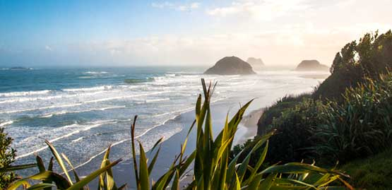 Cheap flights to New Plymouth